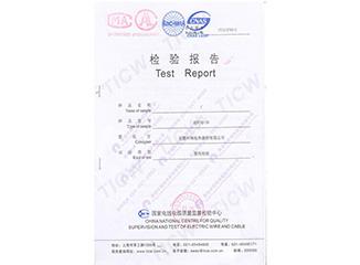 RDP3-J3-30恒功率电热带国家电线电缆检验报告