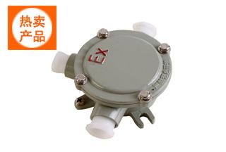 AH电伴热防爆电源接线盒