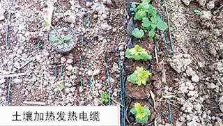 土壤加热发热电缆